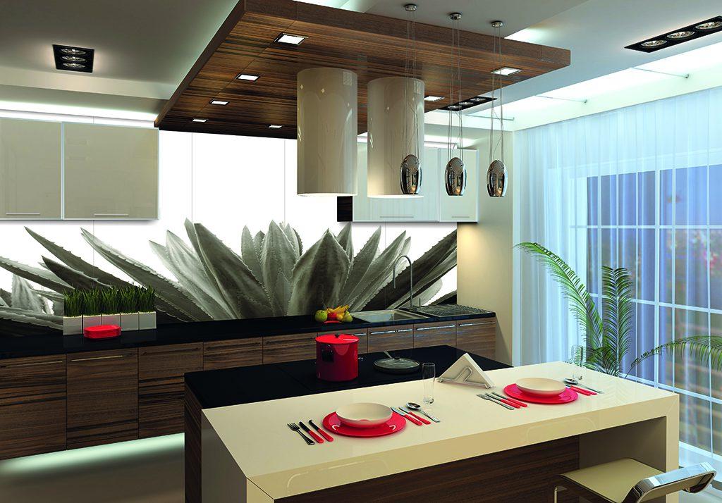Ψηφιακή εκτύπωση κουζίνας με θέμα την αλόη